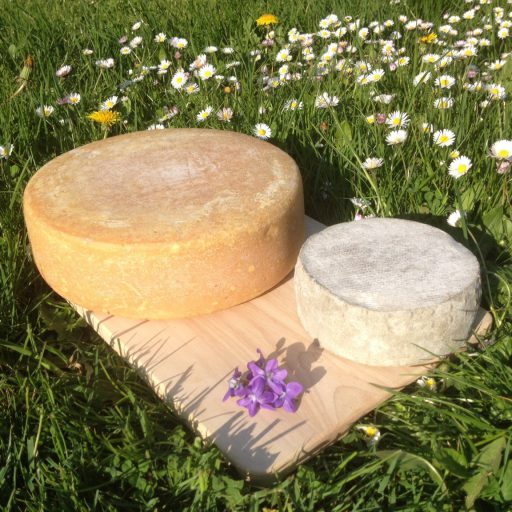 cropped-photo-fromages.jpg